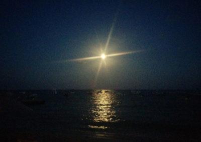 Arasub-civitanova-a-playa-del-carmen-messico (11)