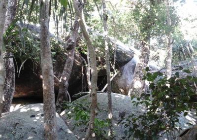 Arasub-civitanova-alle-isole-similan-thailandia (13)