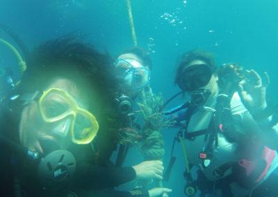Arasub-civitanova-alle-isole-similan-thailandia-130.jpg