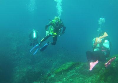 Arasub-civitanova-alle-isole-similan-thailandia-133.jpg