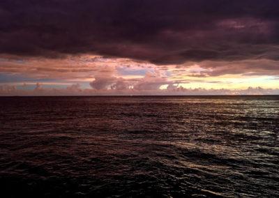 Arasub-civitanova-alle-isole-similan-thailandia (23)