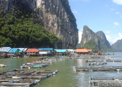 Arasub-civitanova-alle-isole-similan-thailandia (50)