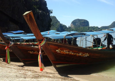Arasub-civitanova-alle-isole-similan-thailandia (88)