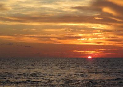 Arasub-civitanova-alle-isole-similan-thailandia (89)