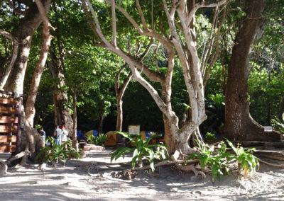 Arasub-civitanova-alle-isole-similan-thailandia (9)
