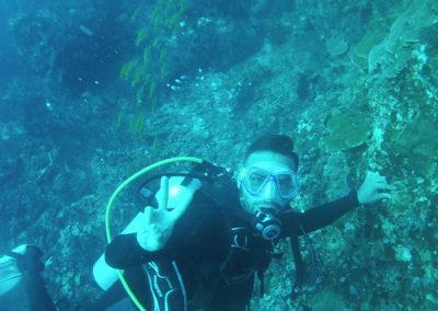 Arasub-civitanova-alle-isole-similan-thailandia-91.jpg